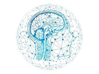 neuropsichiatra
